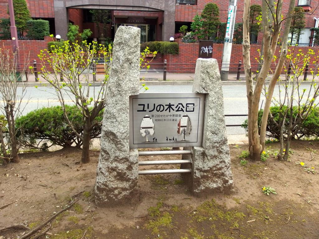 北沢川緑道 ユリの木公園