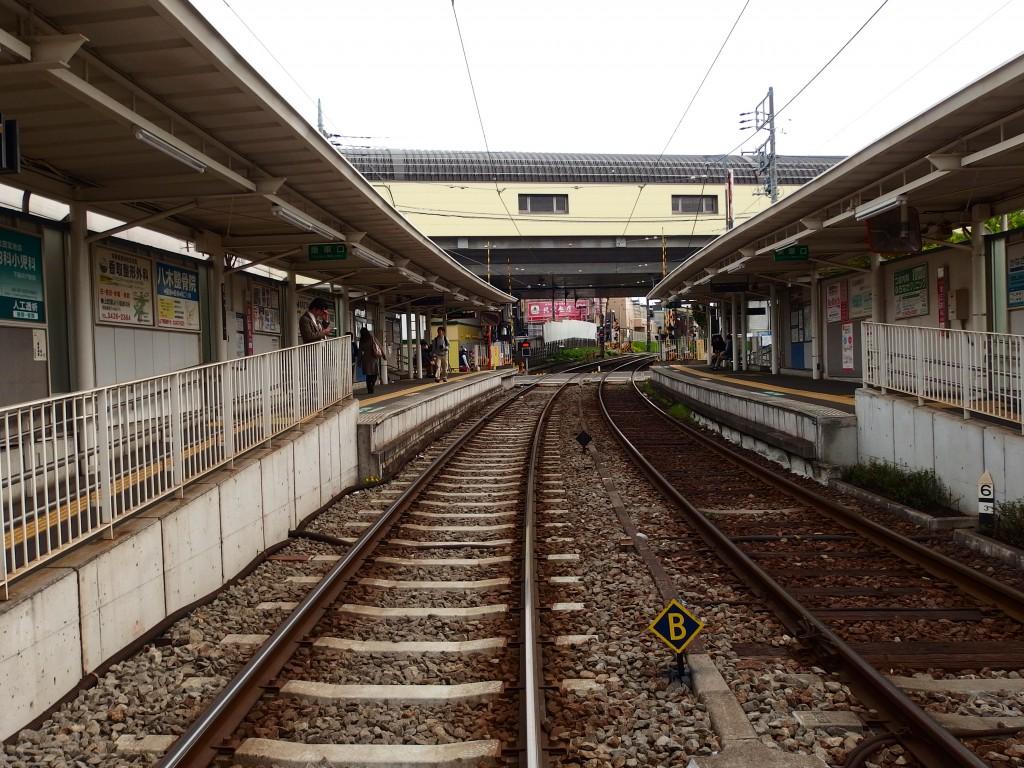 北沢川緑道 山下駅