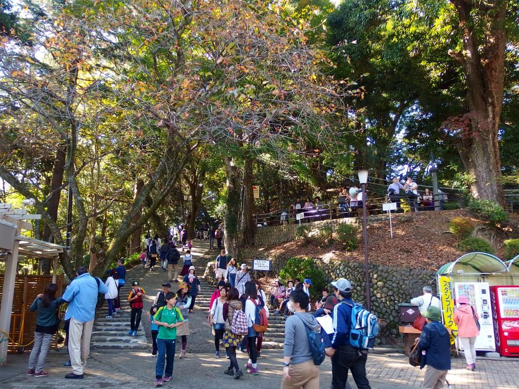 高尾山 エコーリフト 山上駅