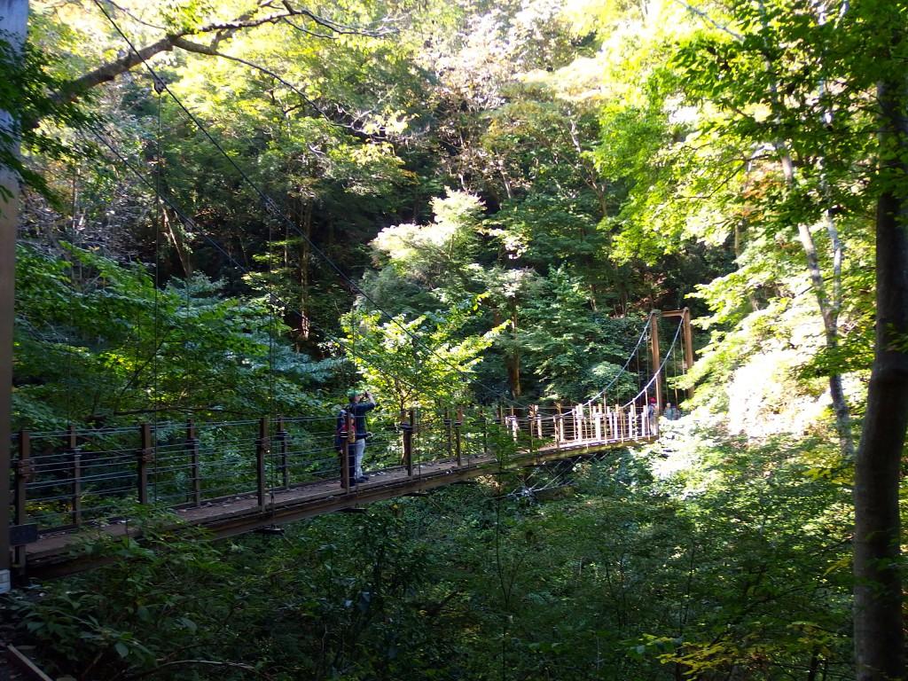 高尾山 4号路 上り 吊り橋