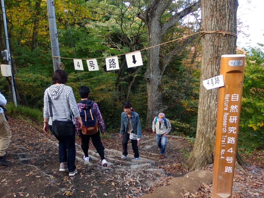 高尾山 4号路 上り